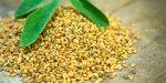 Bockshornklee: kleiner Samen, große Wirkung